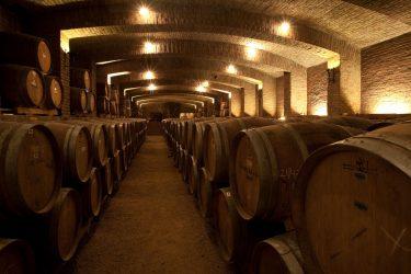 Ruta del Vino Santa Cruz